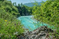 Rivière de Soca dans le printemps Photo stock