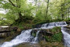 Rivière de Stryj photos libres de droits