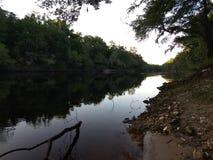 Rivière de Suwannee image libre de droits