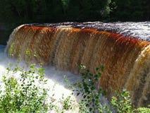 Rivière de Tahquamenon - Michigan photo libre de droits