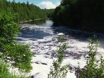 Rivière de Tahquamenon - Michigan image libre de droits