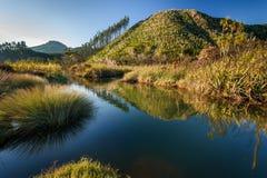 Rivière de Tairua Images libres de droits