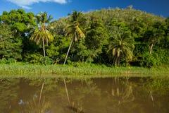 Rivière de Tanama et de Chavon Image libre de droits