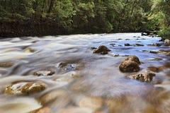 Rivière de TAS Franklin Photographie stock libre de droits