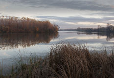 Rivière de Tisa dans l'après-midi de novembre d'automne Image libre de droits