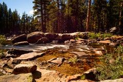 Rivière de Tuolumne près de terrain de camping de prés de Tuolumne Images stock