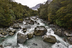 Rivière de Tutoko Image stock