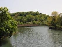 Rivière de Veleka (Sinemorets, Bulgarie) Image stock