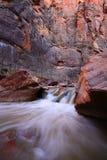 Rivière de Vierge en Zion National Park Photo stock