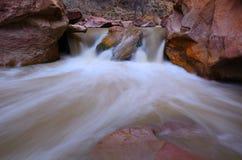 Rivière de Vierge en Zion National Park Photographie stock libre de droits