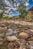 Rivière de Vierge, roches et arbres Zion National Park photo stock