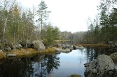 Rivière de Vuoksa dans la forêt d'automne photos stock