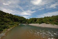 Rivière de Waihou Photographie stock libre de droits