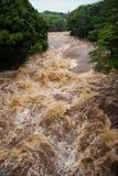 Rivière de Wailuku dans Hilo Photos libres de droits
