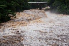 Rivière de Wailuku dans Hilo Image libre de droits