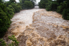 Rivière de Wailuku dans Hilo Image stock