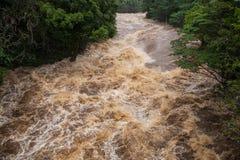 Rivière de Wailuku dans Hilo Photographie stock libre de droits