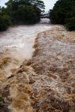 Rivière de Wailuku dans Hilo Images stock