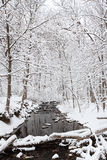 Rivière de Winterland Images stock