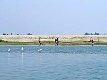Rivière de Yamuna, le fleuve Brahmapoutre, Bogra, Bangladesh Image stock