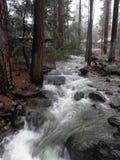 Rivière de Yosemite Image stock