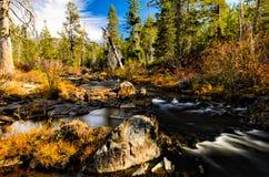 Rivière de Yuba photos stock
