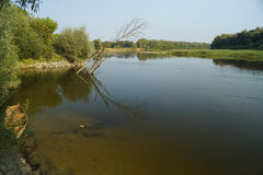 Rivière Desna Images libres de droits