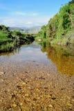 Rivière du Brésil Photo libre de droits
