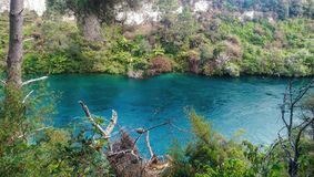 Rivière du Nouvelle-Zélande Image libre de droits