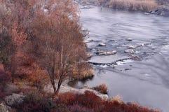 Rivière du sud d'insecte en automne Photos libres de droits