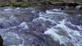 Rivière, eau circulant sur des roches et rochers de montagne clips vidéos