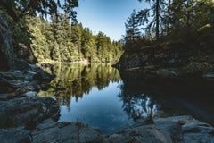 Rivière en île de Vancouver près de Victoria, Canada photos stock