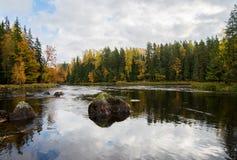 Rivière en automne Photos stock