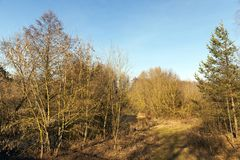 Rivière en février Photo libre de droits