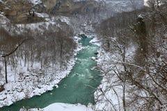 Rivière en hiver Images libres de droits