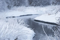 Rivière en hiver. Images stock