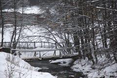 Rivière en montagnes Photos libres de droits