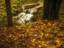 Rivière en parc Images libres de droits