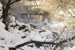 Rivière en première source photos stock