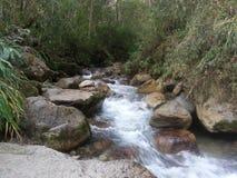 Rivière entourée par les roches et la végétation photographie stock libre de droits
