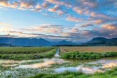 Rivière entre deux champs Photos libres de droits