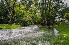 Rivière et arbres Images stock
