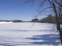 Rivière et arbres congelés en hiver en parc Photographie stock