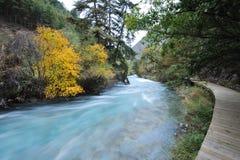 Rivière et chemin Image libre de droits