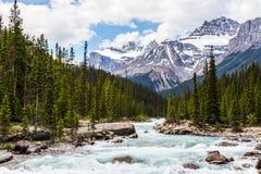 Rivière et crêtes de Mistaya II Image libre de droits