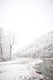 Rivière et forêt de montagne après des chutes de neige Photographie stock