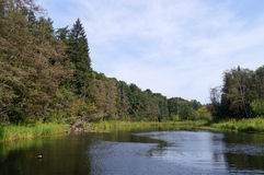 Rivière et nature Photos stock