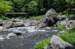 Rivière et nature de Mitakesan image stock