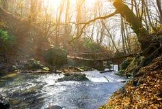 Rivière et pont de montagne image libre de droits