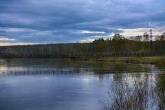 Rivière fantastique avec l'herbe verte fraîche à la lumière du soleil Image stock